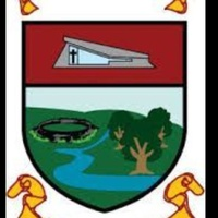Lissycasey GAA logo