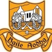 Ballyea Hurling Club logo