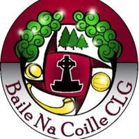 Ballinakill GAA logo
