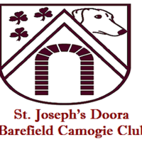 Official D/B Camogie logo