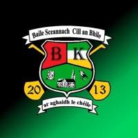 Skenagh/avilla GAA logo