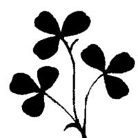 Newtown GAA logo