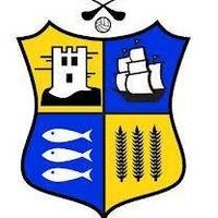 carrigladiesfootball logo