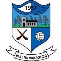 Ballinameela GAA logo
