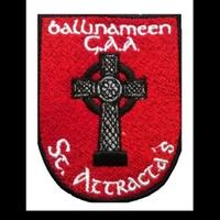 Ballinameen GAA logo