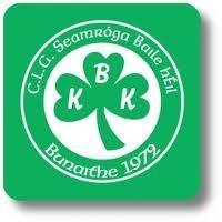 Ballyhale Shamrocks logo