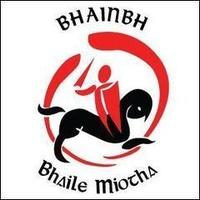 Bannow/BallymittyGaa logo