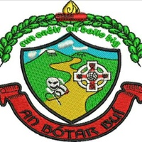 BoherbueGaa logo