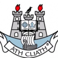 Dublin Camogie logo
