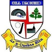 CelbridgeGAA logo