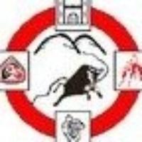 Dromtarriffe GAA logo