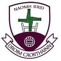 Drumkeerin GAA logo