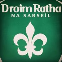 Drumragh Sarsfields logo