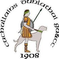 Dunloy Cuchullains logo