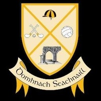 Dunshaughlin GAA logo