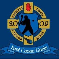 ECG Hurling logo