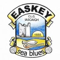 Easkey GAA logo