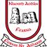 Ferns GAA logo
