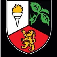 Lavey GAA Club logo