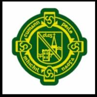 St.Michaels Ladies logo