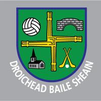 Johnstownbridge GAA logo