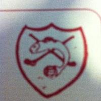 Leixlip GAA logo