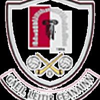 Letterkenny Gaels logo