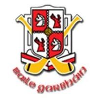 BallygarvanLGFA logo