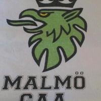 Malmö GAA Club logo
