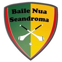 Newtownshandrum GAA logo