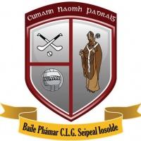 St Pats Palmerstown logo