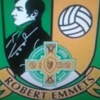 Robert Emmets GAA logo