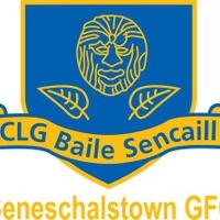 Seneschalstown GAA logo