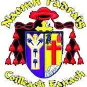 St Patrick's GFC  logo