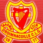 St Johns GAA logo