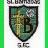 St Barnabas gaa logo