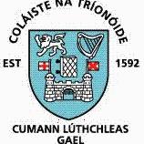 Trinity Hurling logo