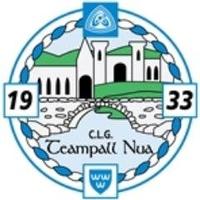 Templenoe GAA logo