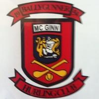 Ballygunner GAA logo