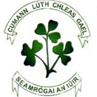 Newry Shamrocks GAC logo