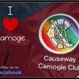 Causeway Camogie logo