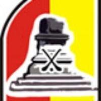 Treaty Gaels Camogie logo