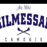 kilmessan camogie logo