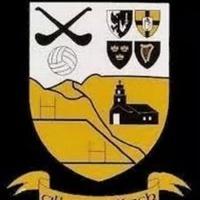 Micheal McCarthaighs logo