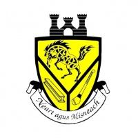Pittsburgh Hurling logo