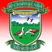 Newtownbutler GAA logo