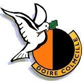 Doire Colmcille GAA logo