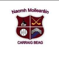 St Mollerans GAA logo