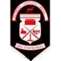Swinford GAA Club logo