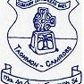 Taghmon Camross GAA logo